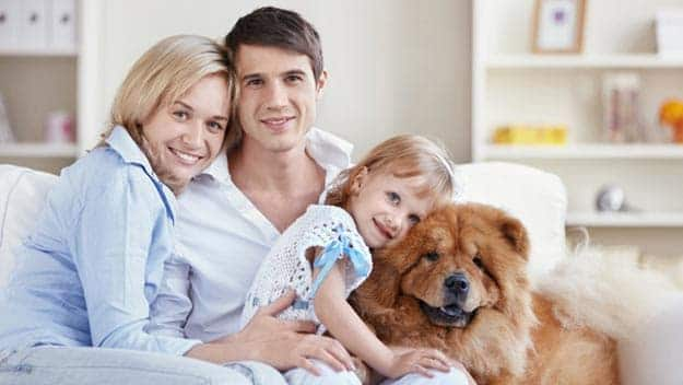 Wills & Trusts dog-young-family Direct Wills Streatham